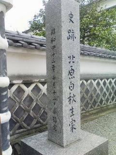 のむみちが往く in 九州     のむ_f0035084_22565356.jpg