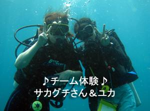 友情ダイビング!!_f0144385_20433417.jpg