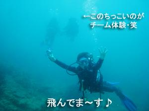 友情ダイビング!!_f0144385_20534558.jpg