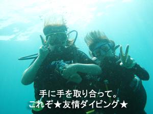 友情ダイビング!!_f0144385_2055522.jpg