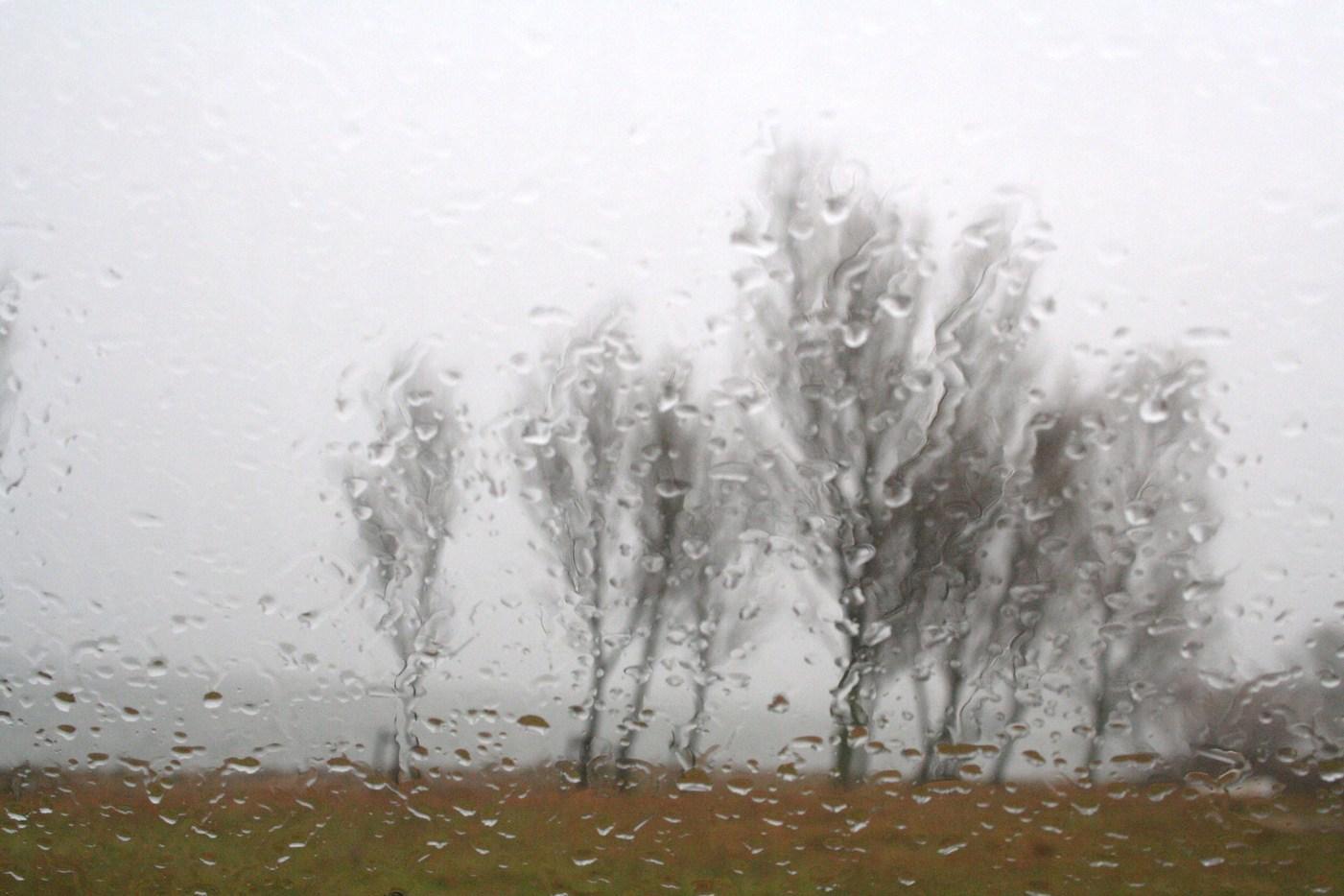 琵琶湖は霧の中だった 滋賀県立近代美術館シュウゾウ・アヅチ・ガリバー展_c0100195_9522039.jpg