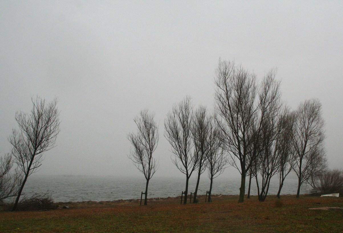 琵琶湖は霧の中だった 滋賀県立近代美術館シュウゾウ・アヅチ・ガリバー展_c0100195_9534539.jpg