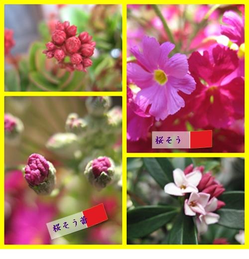 f0198396_0383893.jpg