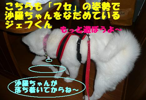 f0121712_14451321.jpg