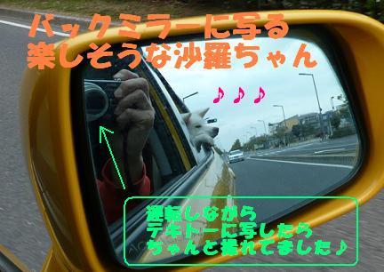 f0121712_2019361.jpg