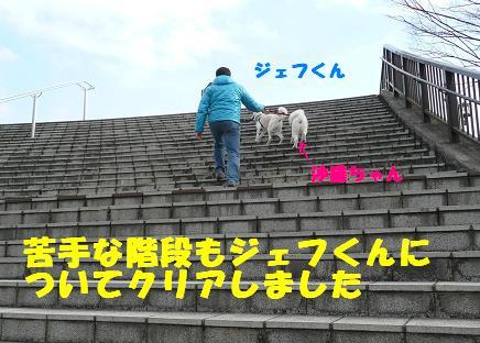 f0121712_20455871.jpg