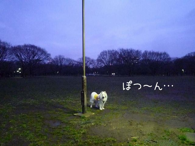 ぽつ~ん_c0062832_1712973.jpg