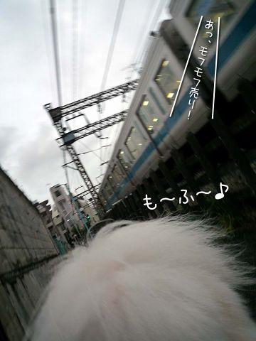 ぽつ~ん_c0062832_17451349.jpg