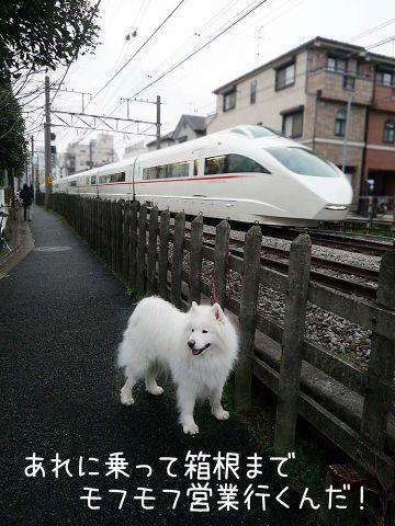 ぽつ~ん_c0062832_18191557.jpg