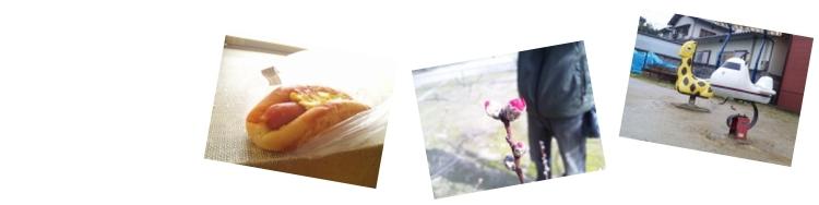 ソーセージパン、梅ちゃんの蕾と旦那、公園の遊具