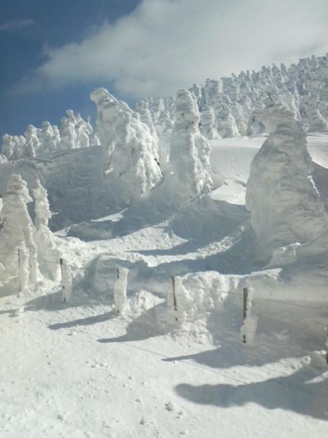 山形蔵王「樹氷」を見に行ってきました_f0216749_18124673.jpg