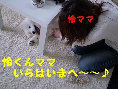a0166954_23163651.jpg