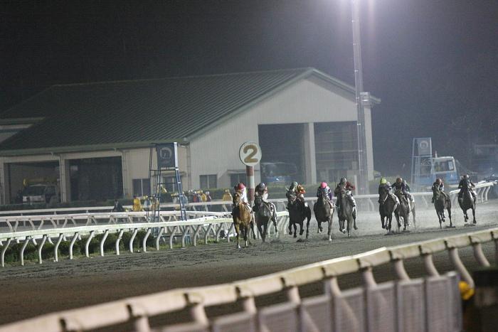 2010年2月28日(日) 高知競馬 10R 梅見月特別 C1 選抜馬_a0077663_2293930.jpg