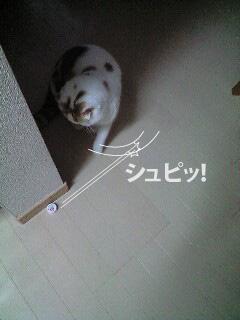 f0079967_1310684.jpg