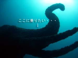 ラチャヤイ島第2弾!_f0144385_2133416.jpg