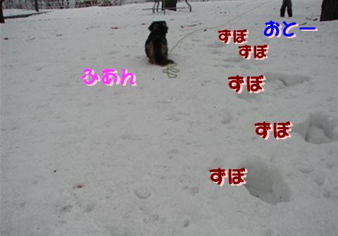 f0195891_1956628.jpg