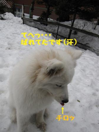 f0212597_13202057.jpg