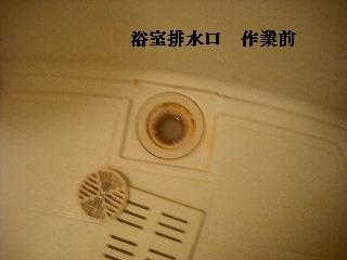 f0031037_1915578.jpg