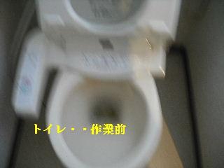 f0031037_1916588.jpg