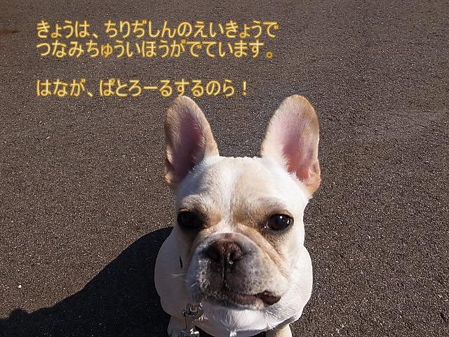 c0081363_0253813.jpg