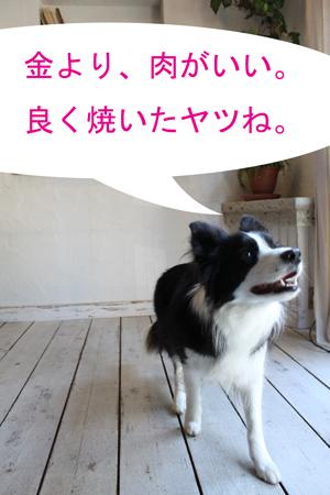 f0132070_052661.jpg