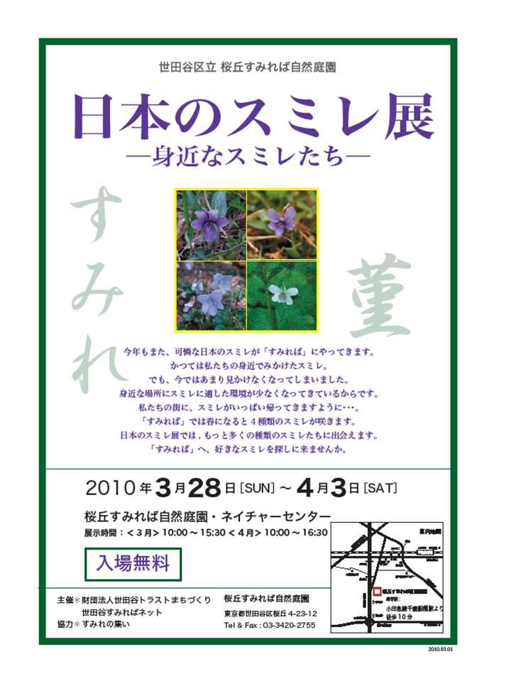 日本のスミレ展_b0049307_10124042.jpg