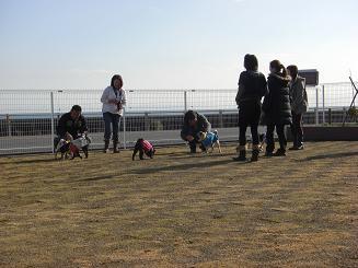 イチゴ狩りオフin静岡【その2】_a0159640_1921357.jpg