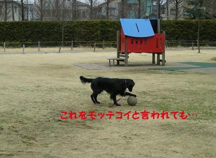 f0107145_21253366.jpg