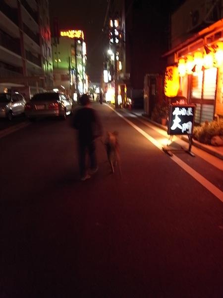 POCHI SANPO_e0162155_22333385.jpg