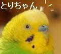 f0196665_013331.jpg