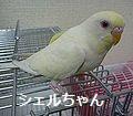f0196665_0134532.jpg