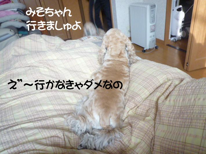 f0218182_165149.jpg