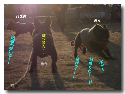 b0134197_20114.jpg
