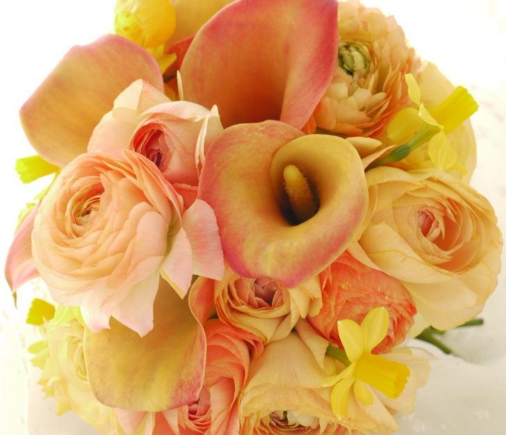 ブーケ カラー「ネロリ」と ラナンキュラスのオレンジ と カチューシャ と花の名前について_a0042928_21492250.jpg