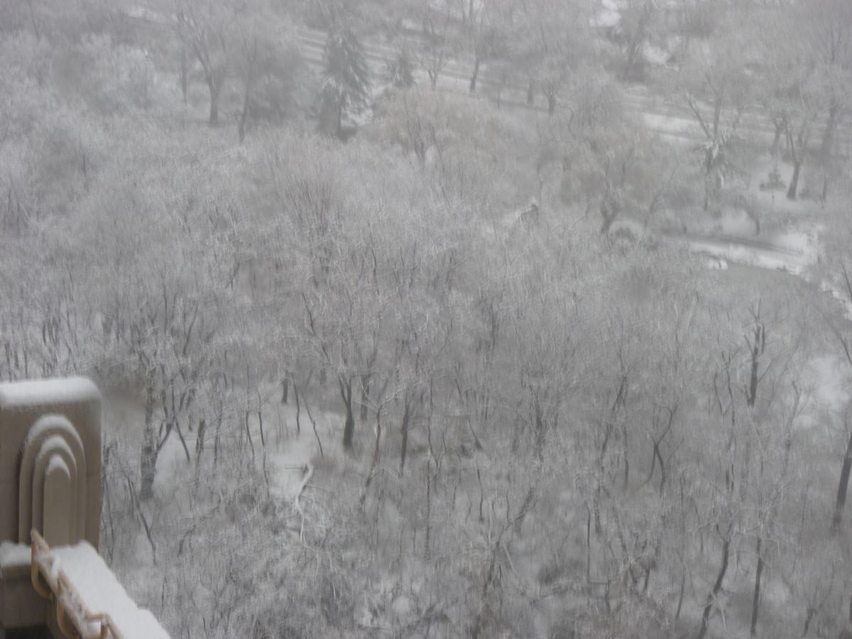 雪の日の散歩と思い出、_d0100880_21404396.jpg