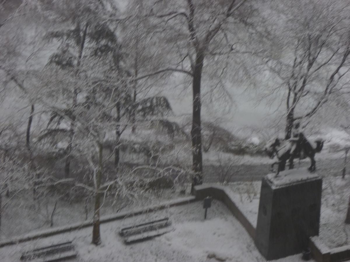 雪の日の散歩と思い出、_d0100880_2141138.jpg