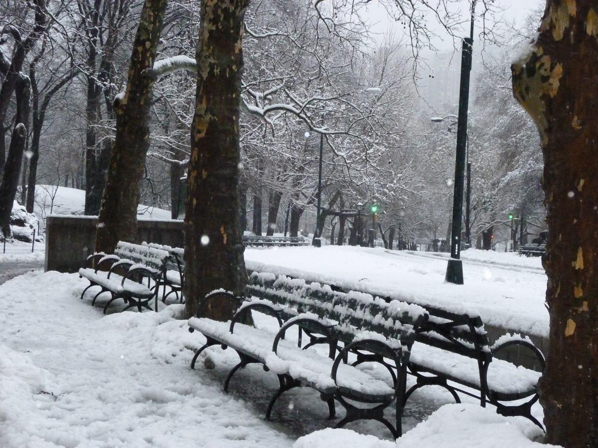 雪の日の散歩と思い出、_d0100880_21414858.jpg