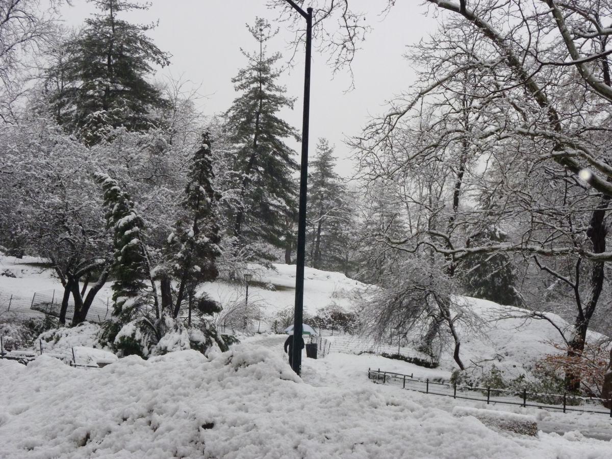 雪の日の散歩と思い出、_d0100880_21425780.jpg