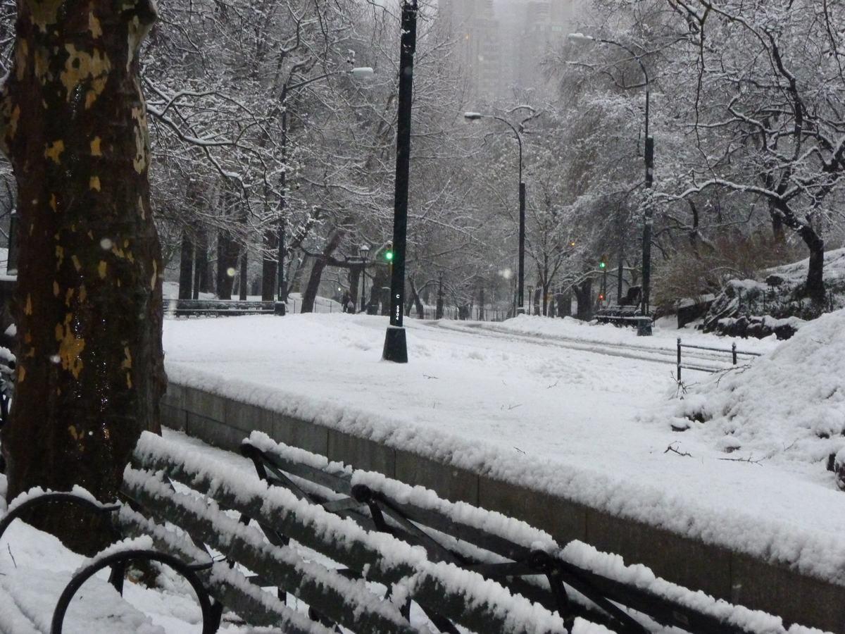 雪の日の散歩と思い出、_d0100880_2143167.jpg