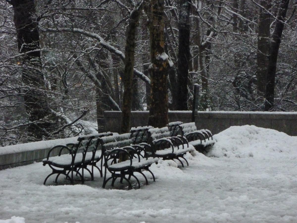 雪の日の散歩と思い出、_d0100880_21433247.jpg