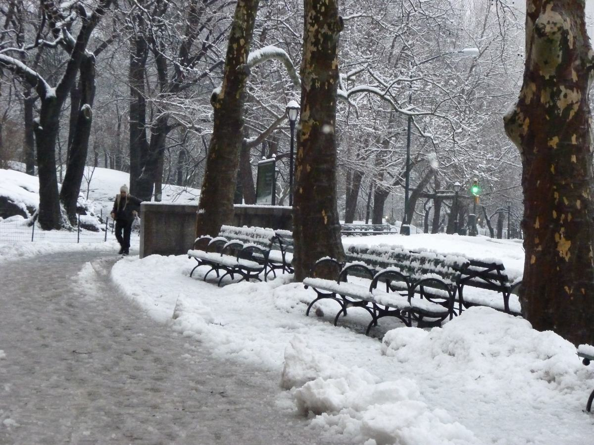 雪の日の散歩と思い出、_d0100880_21442937.jpg