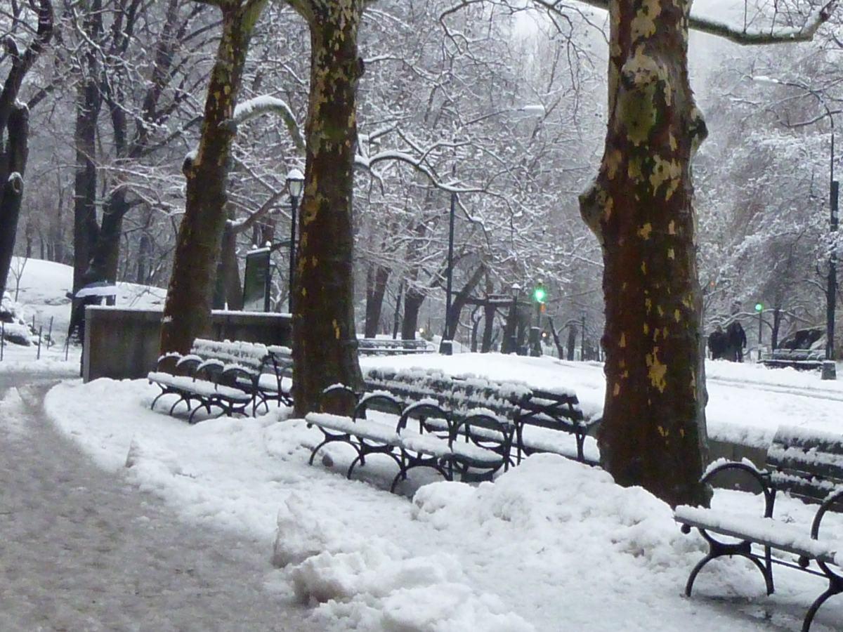 雪の日の散歩と思い出、_d0100880_21445439.jpg
