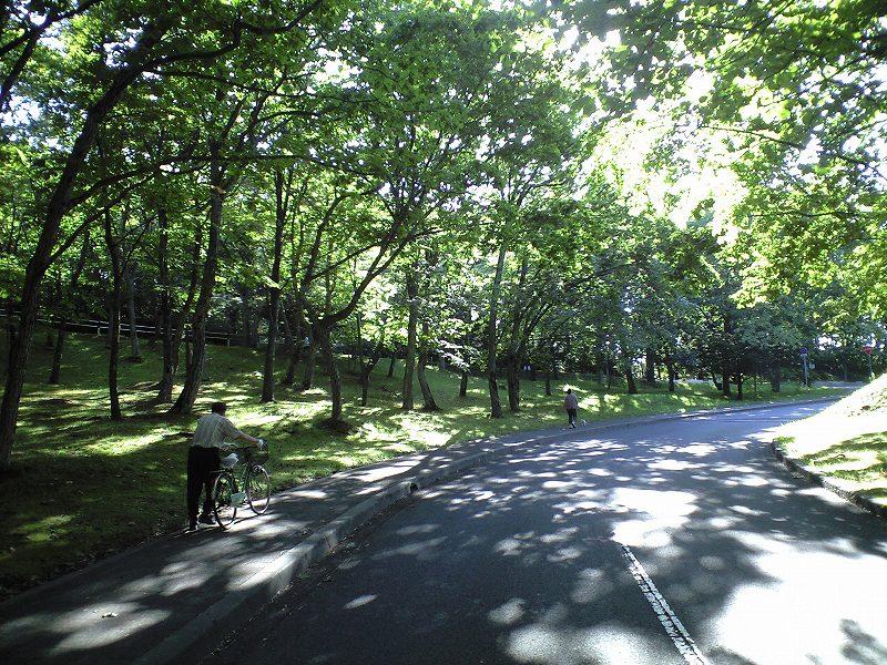 緑ヶ丘公園 お散歩で 悦ちゃんの旧友と遭遇_a0160581_22134490.jpg