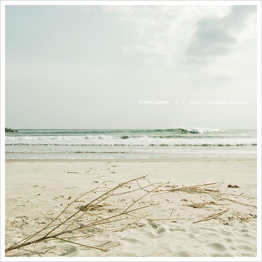 surfer\'s paradise_e0117517_18202997.jpg