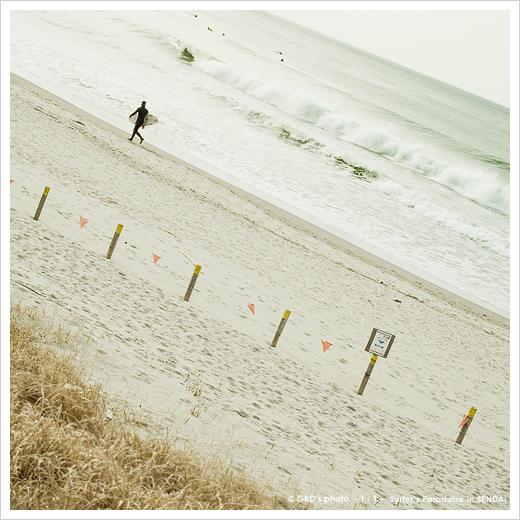 surfer\'s paradise_e0117517_18205776.jpg