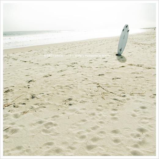 surfer\'s paradise_e0117517_18212529.jpg