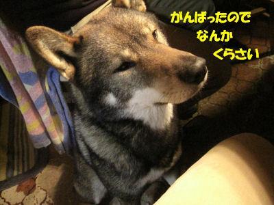 f0143123_2012451.jpg