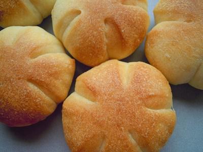 りんごミックス酵母のパン!ばら寿司!_a0165538_10182987.jpg