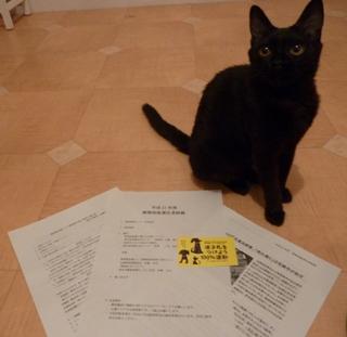 平成21年度熊本市動物取扱責任者研修会。_a0143140_19591746.jpg