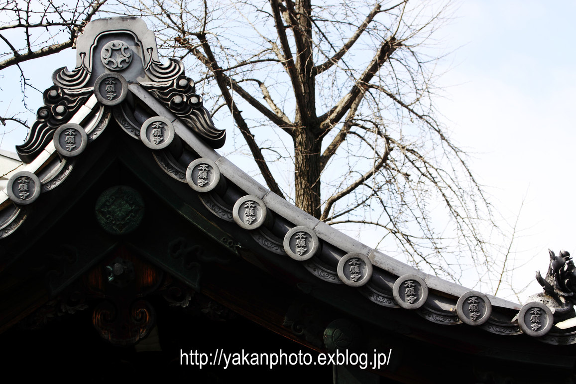 京都研修旅行 ~屋根、鬼瓦撮影記~ 東本願寺編2_b0157849_40772.jpg